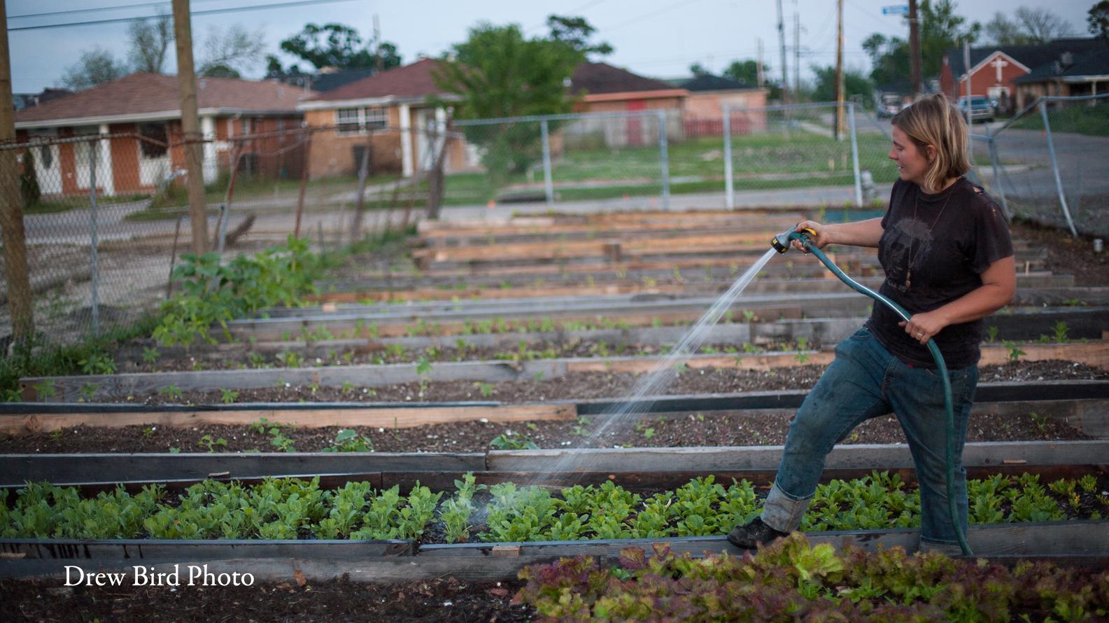 NOLA Food Deserts | New Orleans Urban Farming | San Francisco Photographer | Environmental Photojournalism