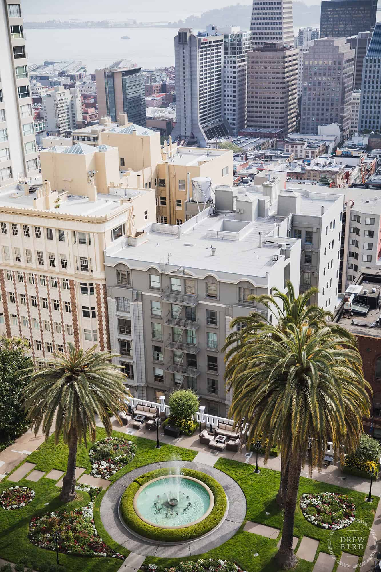 Rooftop garden and San Francisco skyline at the Fairmont Hotel. San Francisco commercial photographer and corporate photographer Drew Bird.